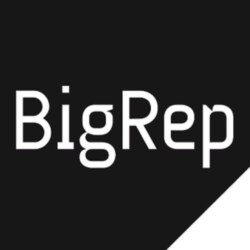 logo-bigrep2014